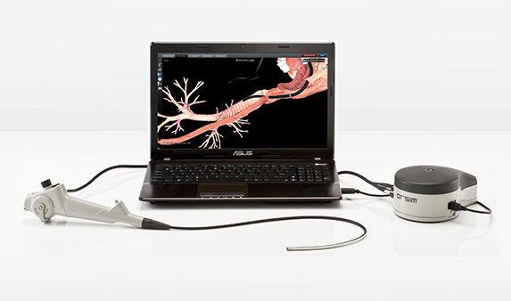 Simulador de broncoscopia / de anatomía / de patología / estación de ...