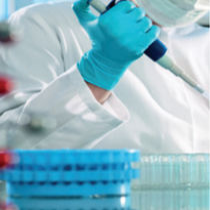 Kit de prueba de trombofilia / de mutaciones del factor V / para ADN / para PCR en tiempo real