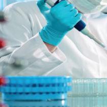 Kit de prueba de hemocromatosis / de genes / para ADN / para PCR en tiempo real