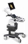 ecógrafo con soporte, compacto / para ecografía ginecológica y obstétrica / para ecografía urológica / blanco y negro