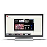 monitor para cirugía / Full HD / LCD / con retroiluminación LED