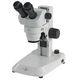 estereomicroscopio de laboratorio / óptico / recto / con zoom