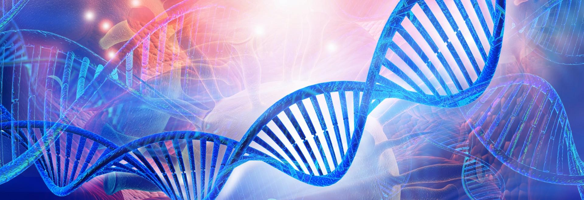 ChIP racionalizado: se trata de números de células pequeñas y bajas concentraciones de cromatina