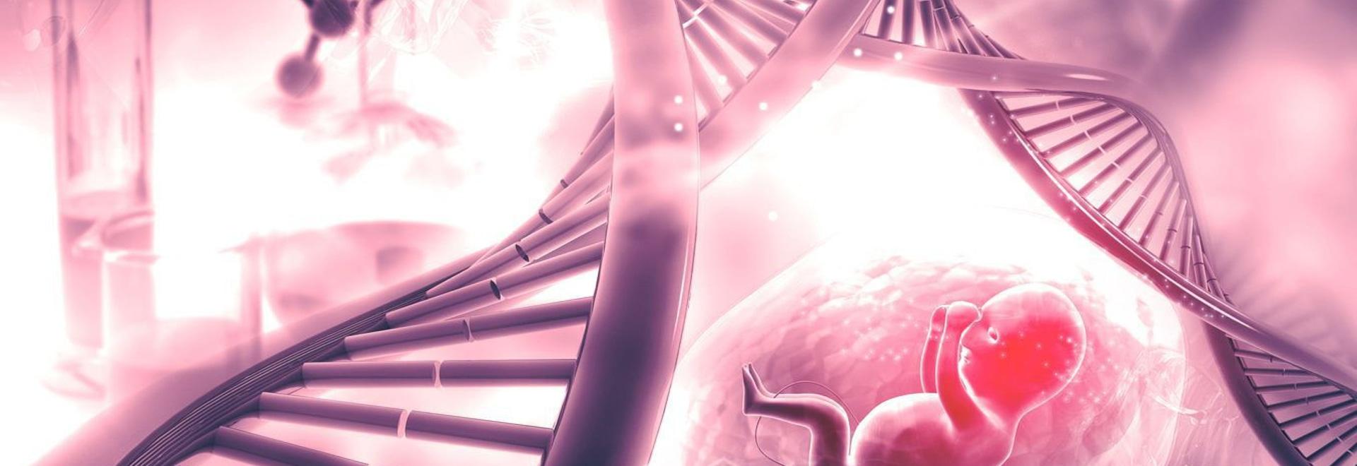 Diagnóstico prenatal de enfermedades raras: Los albores de los métodos no invasivos