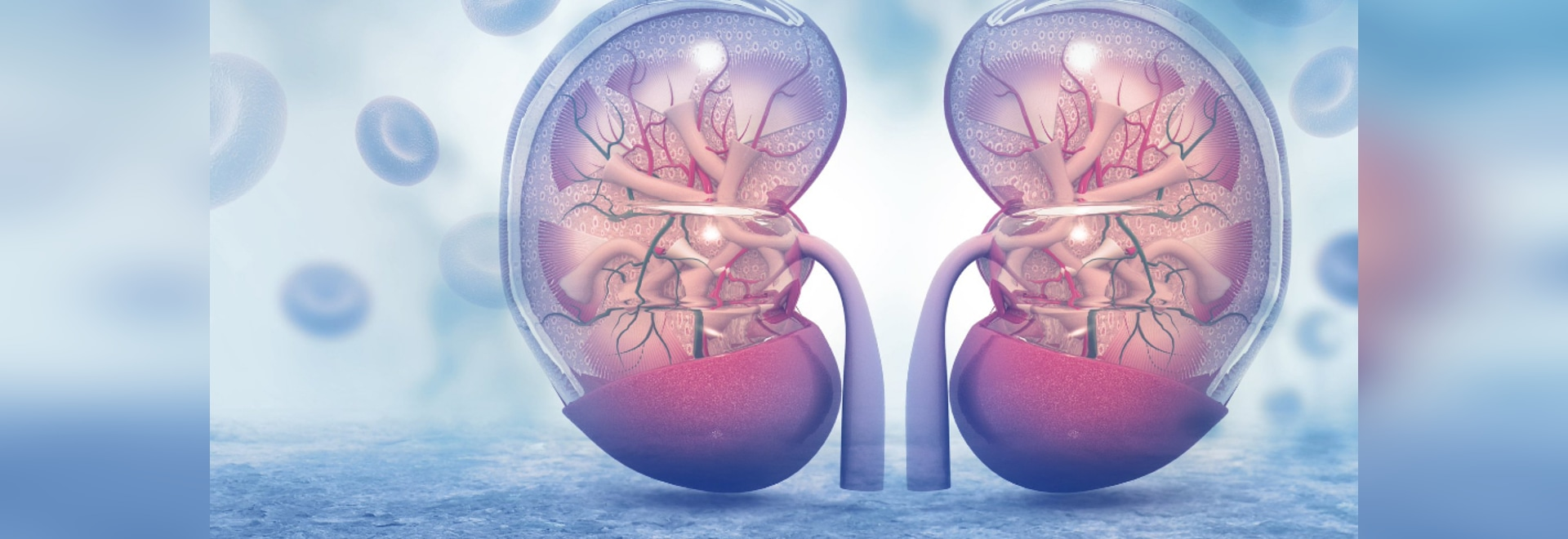Enfermedad de riñón vulnerable a la terapia nana apuntada