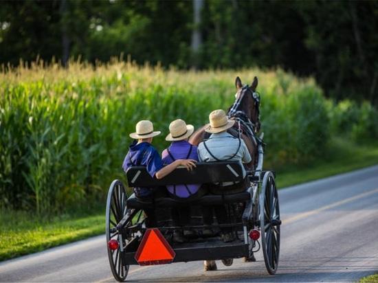 El grupo aislado de Amish lleva el gen antienvejecedor