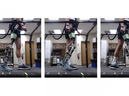 El sistema de aprendizaje del refuerzo entrena automáticamente a las piernas prostéticas