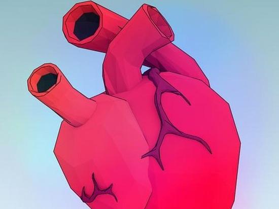Una nueva manera de modelar la válvula de corazón