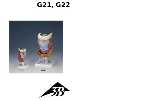 G21, G22