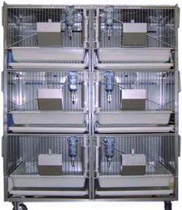 jaula para la experimentación animal para conejos / 6 compartimentos / de acero inoxidable