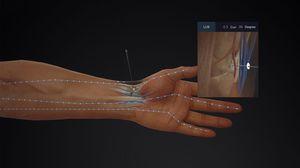 software de anatomía