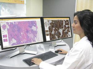 aplicación web para laboratorio de histología