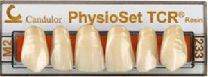 prótesis dental de resina