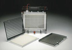 cubeta de electroforesis