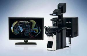 microscopio confocal de barrido láser