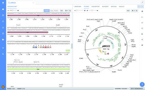 software de biología molecular