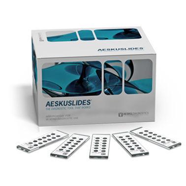 kit de prueba para roedores / de enfermedades autoinmunes / de anticuerpos / de suero