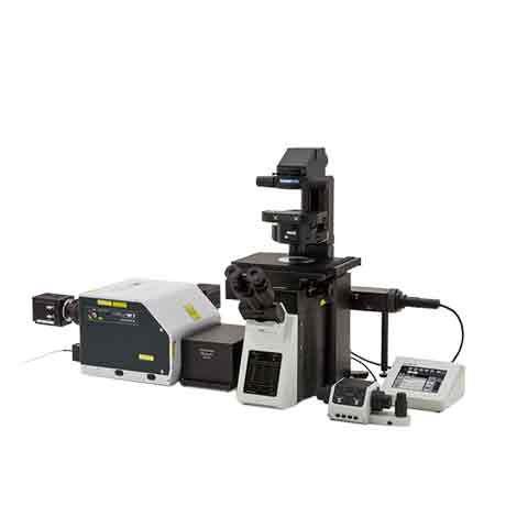 microscopio de laboratorio / para la investigación / médico / digital