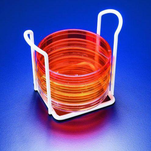 soporte de laboratorio para placas de Petri