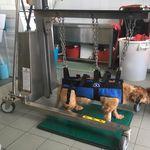 carro veterinario / multifunción / de emergencia / para gasas