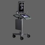 ecógrafo con soporte, compacto / para ecografía urológica / blanco y negro / pantalla táctil