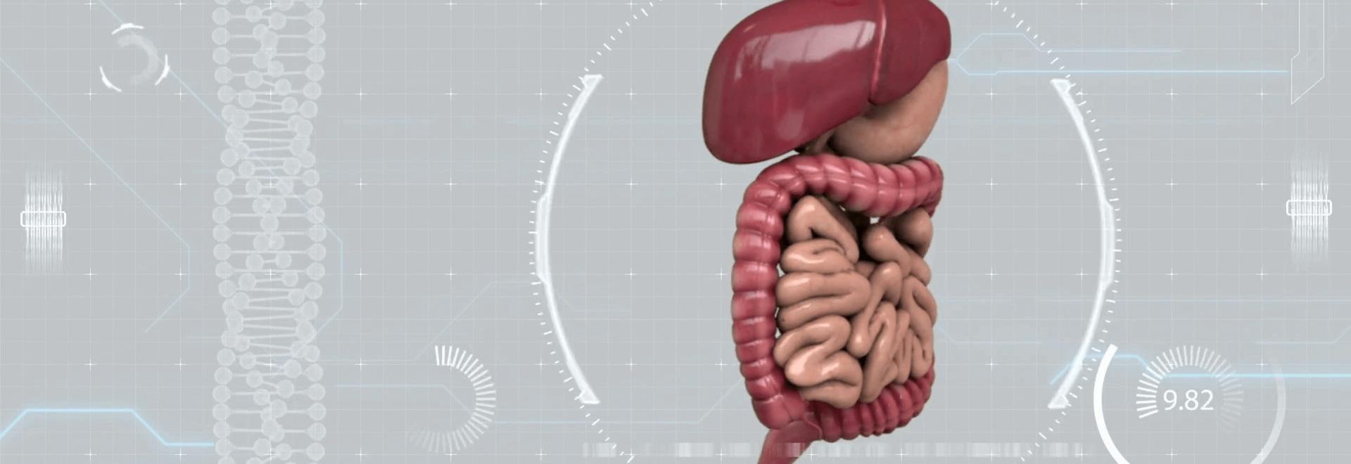 En el futuro de la gastroenterología con digestibles y pruebas de microbios
