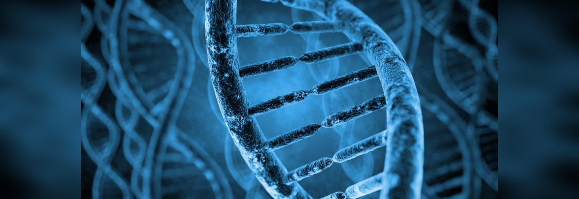 Pensando fuera del congelador: Almacenamiento de ADN y ARN