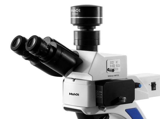 Microscopio de fluorescencia Mshot