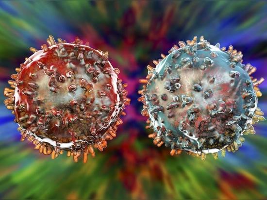 Rogue 'Immune Cell X' es un tipo de célula completamente nuevo. Podría desencadenar la diabetes tipo 1.