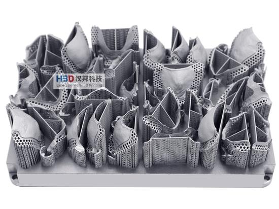 HBD Metal 3D Printing - Dentaduras parciales removibles
