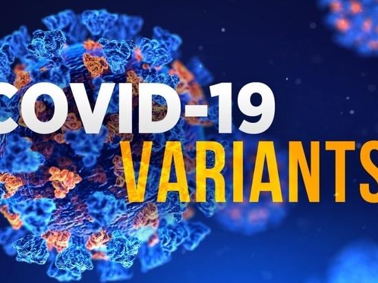 El análisis de un superordenador revela por qué las variantes del coronavirus del Reino Unido y Sudáfrica son más contagiosas y mortales