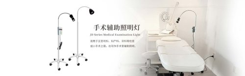 Examination light