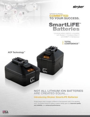 System 7 Battery
