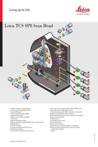 Leica TCS SP8 Scan Head-Flyer_EN