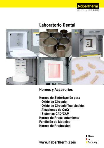 Dental Hornos y Accessorios