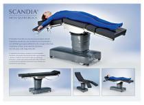 Scandia SC330 Brochure - 2