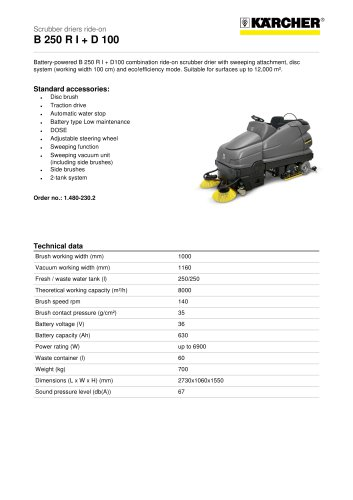 B 250 R I + D 100